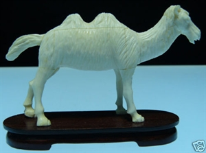 Picture of Cow Bone Camel (9632)