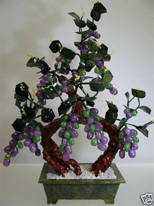 Picture of REAL LAVENDER JADE GRAPES TREE (20A-4)