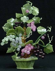 Picture of REAL JADE GRAPES TREE (201-68C)
