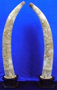 """Picture of 40"""" Pair of Antique Bone Tusks - Dragon Phoenix (F40-DF)"""