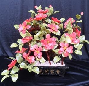 "Picture of 20"" Jade Bonsai Camellia (F567)"