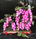 Picture of REAL LAVENDER JADE GRAPE VINE (2016A)