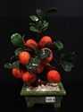 Picture of REAL JADE TANGERINES TREE (20B-3)